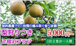 plan_nashigari